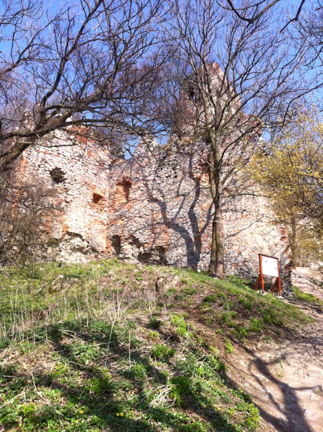 Pajstun Castle appears through the trees