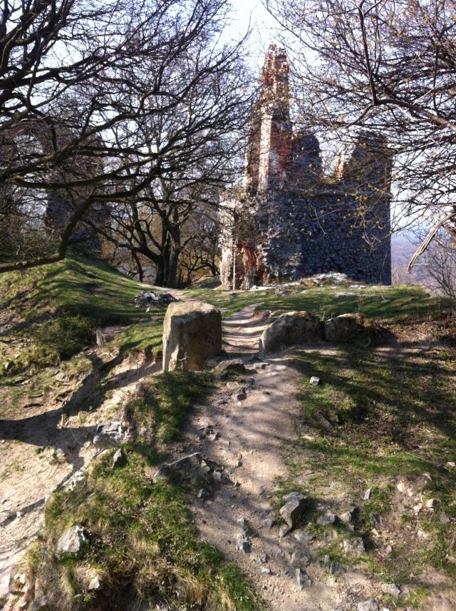 Pajstun Castle's leafy ruins