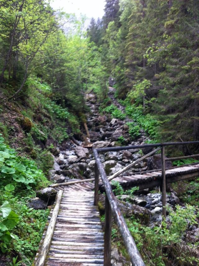Nicely made bridges