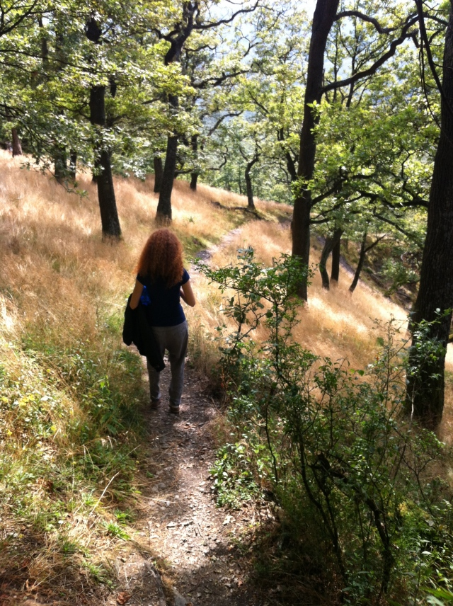 The path on to Oponicky Hrad