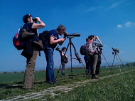 Birdwatchers… ©Tomas Novak
