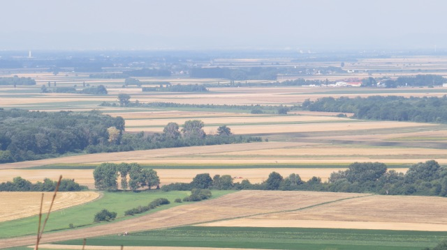 Views of flat Austria to the west ©englishmaninslovakia.com