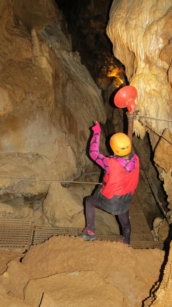 The Dead Bats' Cave